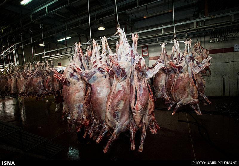 چرا گوشت 5 دلاری 100 هزار تومان فروخته می شود!؟